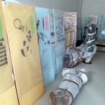 Muzeja eksponātu pārvietošana